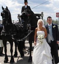 Frisones en bodas